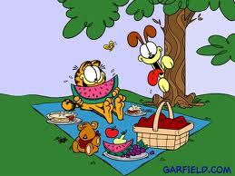Garfield Picinic WeightWise